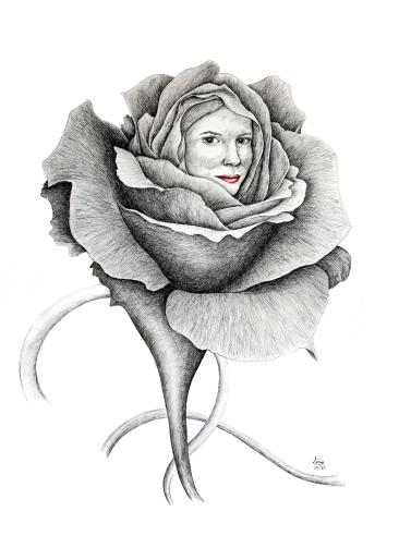 Pli selon Pli - 61 x 80 cm - China Ink/Watercolor on Paper